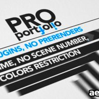 PROFESSIONAL PORTFOLIO – AFTER EFFECTS PROJECT (VIDEOHIVE)