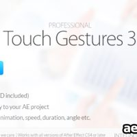 PROFESSIONAL TOUCH GESTURES (VIDEOHIVE)