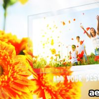 SUNNY FLOWERS – AFTER EFFECTS PROJECT (VIDEOHIVE)