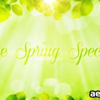 THE SPRING SPECIAL – PROMO PACK (VIDEOHIVE)