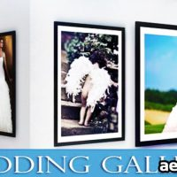 WEDDING GALLERY 2012 – AFTER EFFECTS PROJECT (VIDEOHIVE)