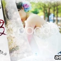 WEDDING SLIDESHOW – AFTER EFFECTS TEMPLATE (POND5)