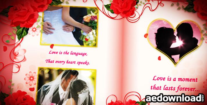 Wedding Album Red Roses