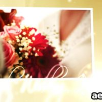 WEDDING HEARTS CS4 – AFTER EFFECTS PROJECT (VIDEOHIVE)