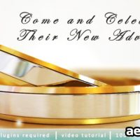 WEDDING INVITATION 2533538 – PROJECT FOR AFTER EFFECTS (VIDEOHIVE)