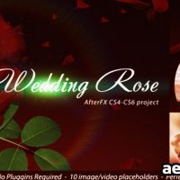 WEDDING ROSE – PROJECT FOR AFTER EFFECTS (VIDEOHIVE)