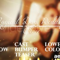 MAGICAL DAY WEDDINGS PACK (VIDEOHIVE)