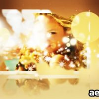 WEDDINGS PARTICLES CS4 – AFTER EFFECTS PROJECT (VIDEOHIVE)