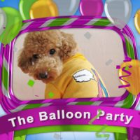THE BALLOON PARTY – PROJECT FOR AFTER EFFECTS (VIDEOHIVE)