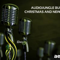 AUDIOJUNGLE BUNDLE VOL 4 – CHRISTMAS AND NEW YEAR EDITION