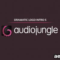 DRAMATIC LOGO INTRO 5 (AUDIOJUNGLE FREE DOWNLOAD)