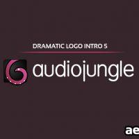 DRAMATIC LOGO INTRO 5 (AUDIOJUNGLE FREE DOWNLOAD)