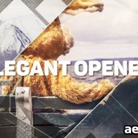 ELEGANT OPENER 14822667 – VIDEOHIVE FREE DOWNLOAD