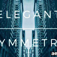 ELEGANT SYMMETRY – VIDEOHIVE FREE DOWNLOAD