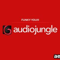 FUNKY YOU!!! (AUDIOJUNGLE)