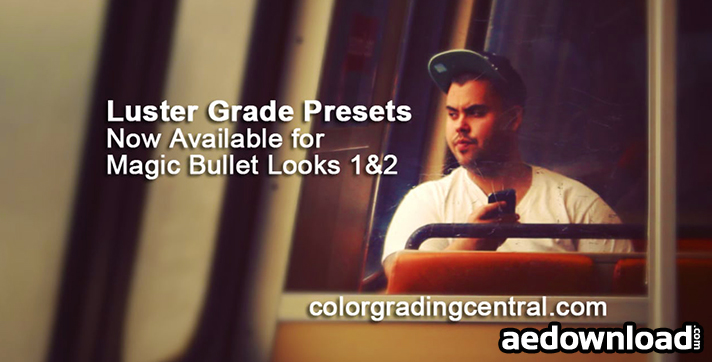 LUSTER GRADE PRESESTS FOR MAGIC BULLET LOOKS