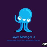 LAYER MANAGER V2.03 – VIDEOHIVE FREE DOWNLOAD