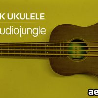 PINK UKULELE (AUDIOJUNGLE FREE DOWNLOAD)