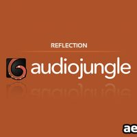 REFLECTION (AUDIOJUNGLE)