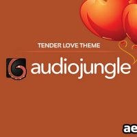 TENDER LOVE THEME (AUDIOJUNGLE)