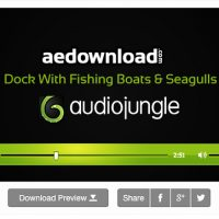 Dock With Fishing Boats & Seagulls – Audiojungle 10855228 free download