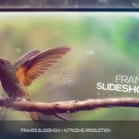VIDEOHIVE PARALLAX FRAMES FREE AFTER EFFECTS TEMPLATE
