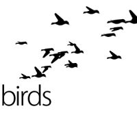 FLYING BIRDS – MOTION GRAPHIC  FREE DOWNLOAD(VIDEOHIVE)