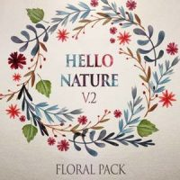 VIDEOHIVE HELLO NATURE – FLORAL PACK V2 – AFTER EFFECTS TEMPLATES