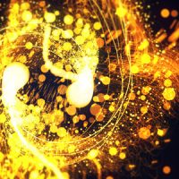 VIDEOHIVE ELEGANT PARTICLES FREE AFTER EFFECTS TEMPLATE