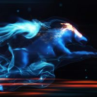 VIDEOHIVE MYSTIC WOLF REVEAL FREE AFTER EFFECTS TEMPLATE