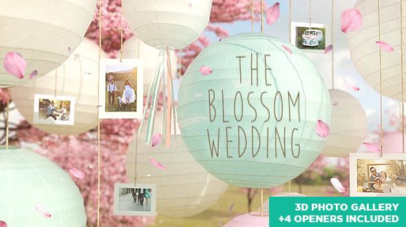 The Blossom Wedding - Photo Gallery Slideshow