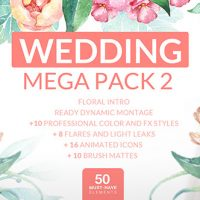 VIDEOHIVE WEDDING MEGA PACK 2 FREE AFTER EFFECTS TEMPLATE