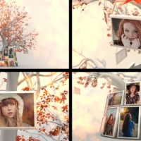 VIDEOHIVE MEMORY TREE SLIDESHOW FREE DOWNLOAD