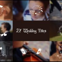 VIDEOHIVE WEDDING TITLES 17267979 FREE DOWNLOAD
