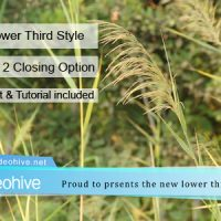 VIDEOHIVE LOWER THIRD 5768490 FREE DOWNLOAD
