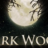 VIDEOHIVE DARK WOOD FREE AFTER EFFECTS TEMPLATE
