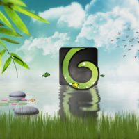 NATURE LOGO REVEALER – AFTER EFFECTS PROJECT (VIDEOHIVE)