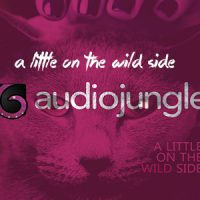 A Little On The Wild Side (Free Audiojungle)