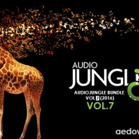 AUDIOJUNGLE BUNDLE VOL 7 (2016) FREE DOWNLOAD