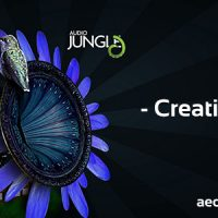 CREATIVITY (AUDIOJUNGLE) FREE DOWNLOAD
