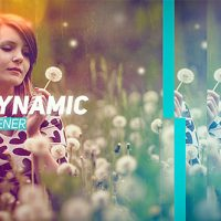 VIDEOHIVE DYNAMIC OPENER 17757277 FREE DOWNLOAD