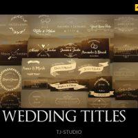 VIDEOHIVE WEDDING TITLES 17622074 FREE DOWNLOAD