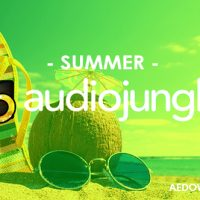 SUMMER (AUDIOJUNGLE) FREE DOWNLOAD