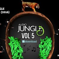 AUDIOJUNGLE BUNDLE VOL 5 (2016) FREE DOWNLOAD