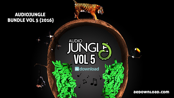 AUDIOJUNGLE BUNDLE VOL 5 (2016) FREE DOWNLOAD - Free After Effects
