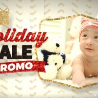 VIDEOHIVE HOLIDAY SALE PROMO FREE DOWNLOAD