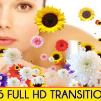 EDITORS TRANSITION PACK – MOTION GRAPHICS (VIDEOHIVE)