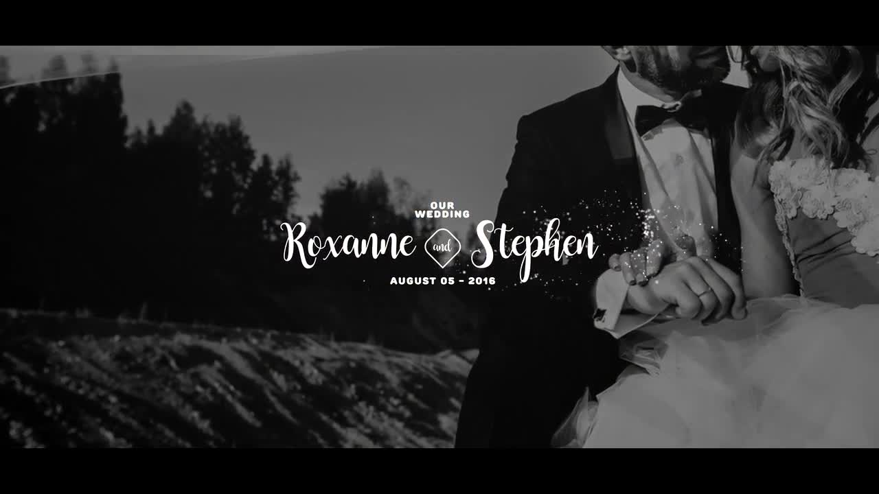 PREMIUM WEDDING TITLES - AFTER EFFECTS TEMPLATE (MOTION
