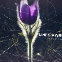 VIDEOHIVE LINES PARALLAX SLIDESHOW FREE DOWNLOAD