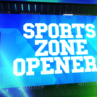 VIDEOHIVE SPORTS ZONE OPENERS FREE DOWNLOAD